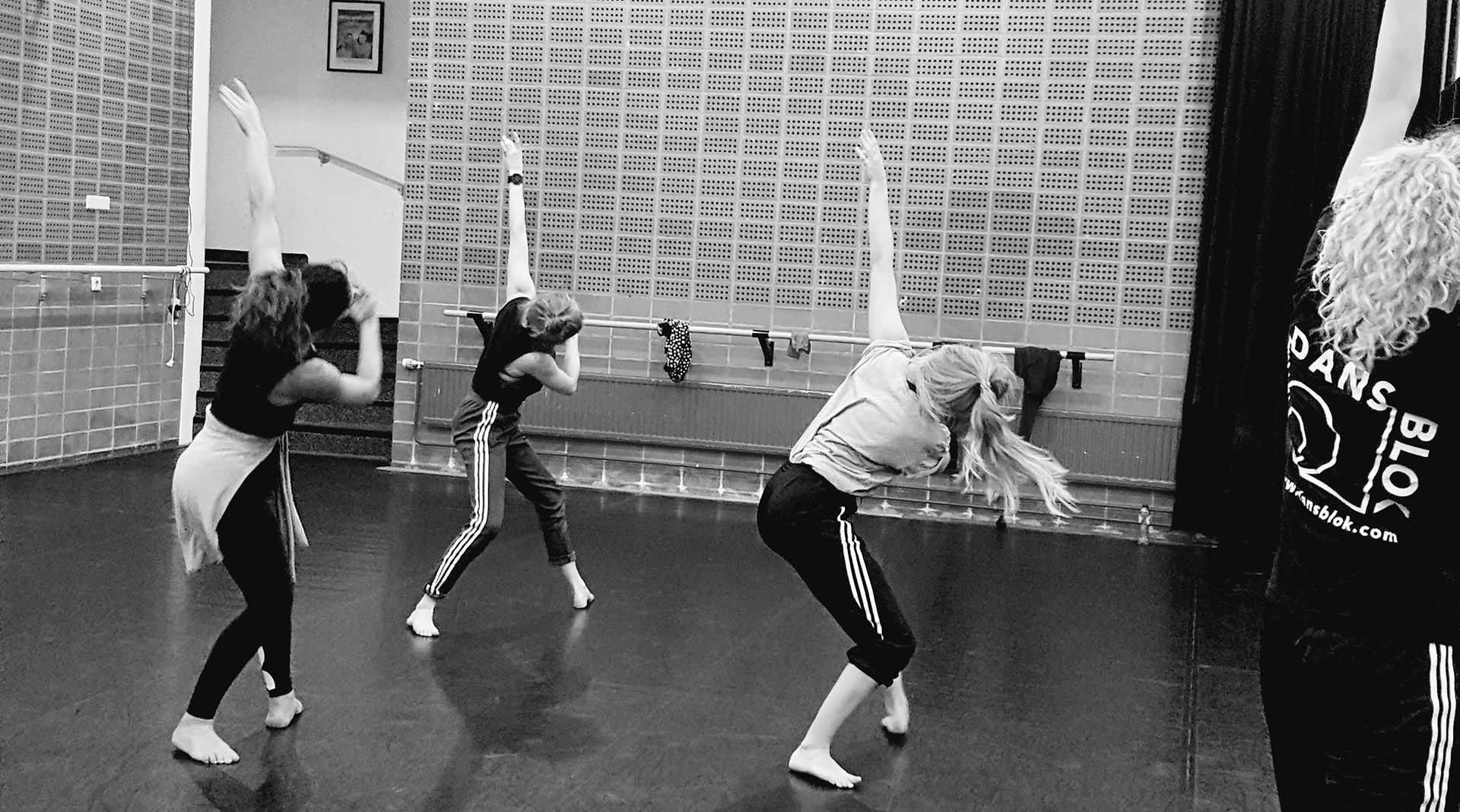 Danstraining DansBlok Header verkleind zwart wit bijgesneden
